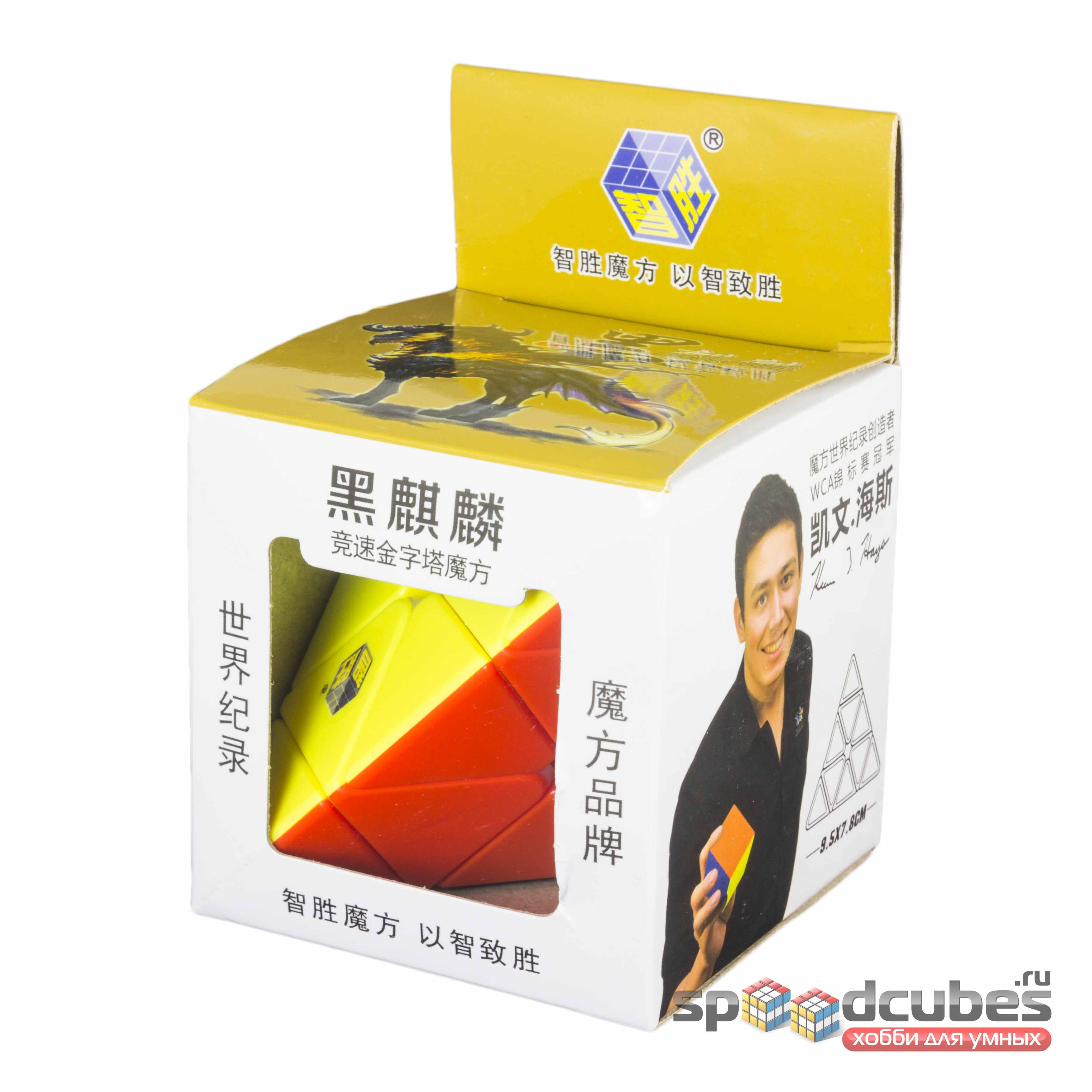 YuXin Black Kilin Pyraminx Color 1